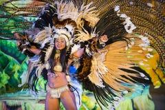 巴西狂欢节女性舞蹈家 库存照片