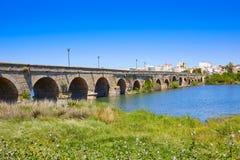 西班牙入口罗马桥梁的梅里达 库存照片
