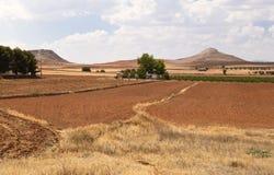 西班牙农村横向 免版税库存图片