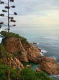 西班牙和美好的鲜绿色颜色海岩石海岸  库存照片