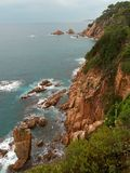 西班牙和美好的鲜绿色颜色海岩石海岸  免版税库存照片