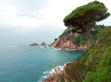 西班牙和美好的鲜绿色颜色海岩石海岸  免版税库存图片