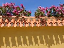 西班牙墙壁和夹竹桃花 免版税库存图片
