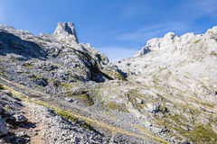 西班牙山landscapen, Picos de Europa 免版税库存图片