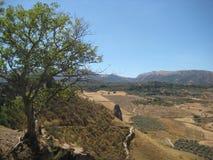 西班牙平原 库存图片