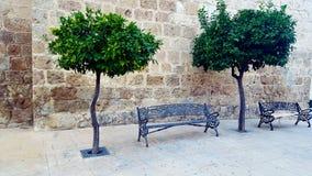 西班牙广场、正方形与树和教会 图库摄影