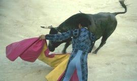 西班牙斗牛士 免版税库存图片