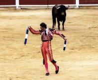 西班牙斗牛 被触怒的公牛侵袭斗牛士 西班牙2017 07 25 2017年 Vinaros巨大的Corrida de toros 免版税库存照片