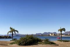 西班牙海滩的风景与棕榈树和伞的 免版税库存图片