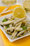 西班牙烹调。被油炸的海鲜。Pescaito Frito。 免版税库存照片
