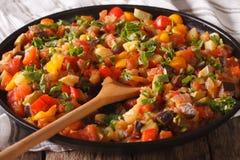 西班牙烹调:在板材的菜炖煮的食物Pisto manchego宏指令 免版税库存图片