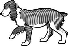 西班牙猎狗狗 向量例证