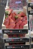 从西班牙的草莓 库存照片