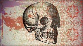 西班牙的头骨 图库摄影