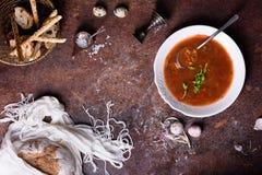 西班牙蕃茄汤用荷兰芹、香料和酥脆面包午餐的 看法从上面,拷贝空间 库存照片