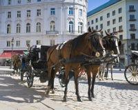 西班牙骑术学校,维也纳 免版税图库摄影