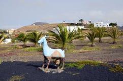 西班牙,加那利群岛,山羊雕塑 库存图片