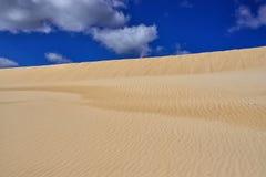 西班牙,加那利群岛,费埃特文图拉岛, Parque Natural de las杜纳斯de Corralejo 免版税库存照片