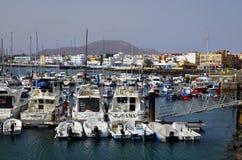 西班牙,加那利群岛,费埃特文图拉岛 图库摄影