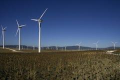 西班牙tahivilla windpark 库存图片