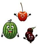 西瓜、无核小葡萄干和樱桃动画片果子 库存照片