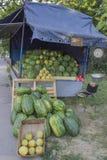 西瓜卡车 库存照片