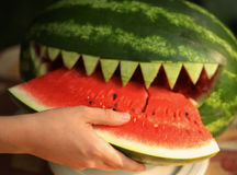 西瓜在sarp吃切片的牙嘴切开了 库存图片
