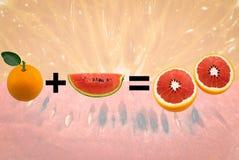 西瓜混合桔子 库存图片