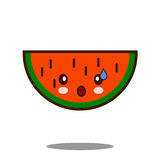 西瓜苹果计算机果子漫画人物象kawaii平的设计传染媒介 库存图片