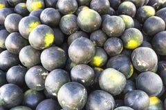 西瓜,完善的果子为夏天 免版税库存图片