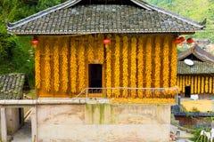 西疆庙村玉米垂悬的议院墙壁中国 库存图片