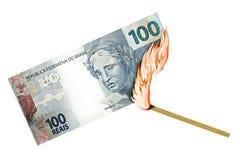 巴西真正的烧伤 免版税图库摄影
