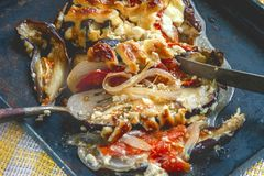 西红柿原料、肉和葱,茄子特写镜头用在盘的调味汁 免版税库存照片