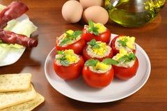 西红柿原料 免版税库存照片