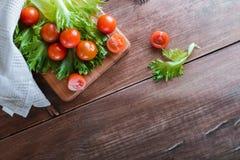 西红柿和沙拉叶子在切板有软的焦点的在背景 复制文本空间 库存图片