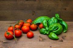 西红柿和蓬蒿在木 免版税库存照片