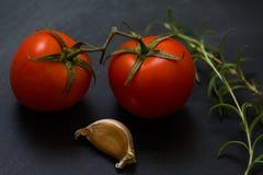 西红柿和迷迭香,大蒜 免版税库存照片
