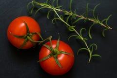 西红柿和迷迭香 库存照片
