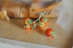 西红柿小树枝在一张木桌上的不顾一条装饰木鳄鱼 免版税库存照片