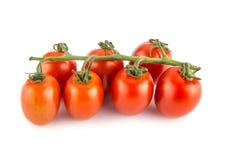 西红柿被隔绝在白色背景关闭 库存照片
