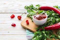 西红柿酱辣调味汁、辣椒、荷兰芹和蓬蒿,在木bac 免版税库存图片