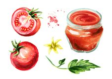 西红柿酱集合 水彩手拉的例证,隔绝在白色背景 库存照片