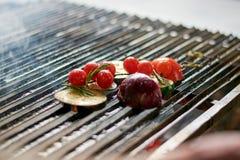 西红柿,夏南瓜,茄子,在格栅的葱 库存照片