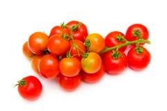 西红柿 免版税库存照片