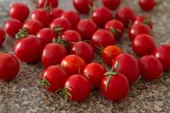 西红柿II 图库摄影