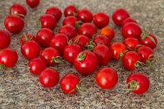 西红柿III 库存照片
