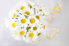 戴西花束在浅灰色的背景的 与五颜六色的花的静物画 文本的新雏菊地方 花concep 免版税库存照片