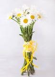 戴西花束在浅灰色的背景的 与五颜六色的花的静物画 文本的新雏菊地方 花concep 库存照片