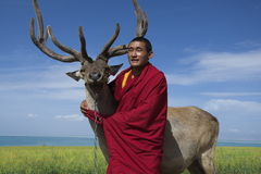 西藏修士和驯鹿 库存照片