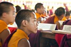 年轻西藏修士 免版税库存图片